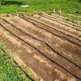 Az utóbbi években átélt/átvészelt aszályos és forró nyarak után sokunkban érett meg az elhatározás: nem hagyjuk veszni az őszi és tavaszi kertészeti munkák eredményét, nem várjuk meg, hogy az aszály idén […]
