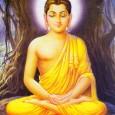 Időtlen időkkel ezelőtt élt Indiában egy király, akit Szuddhodhanának hívtak. Ő volt Gajá állam kormányzója. Egy éjszaka feleségének, Majá királyné egy álmot látott. Angyalok repítették el a Himalája hegyekbe, egy színaranyból […]
