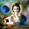 Milliók ünneplik világszerte Janmāṣṭamīt, az Úr Kṛṣṇa megjelenését és a Krisna-tudat Nemzetközi Szervezete megalapításának 50. évfordulóját. Kṛṣṇa megjelenése a földi világban Az Úr Kṛṣṇa földi megjelenésének, azaz születésének évfordulóját Krisna-völgyben ünnepelik […]