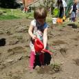 Május 12-én húsz egri óvodás látogatott el egri egyházközösségünk veteményes kertjébe, hogy megismerjék a palántázás folyamatát és megismerkedjenek a kertészkedés első lépéseivel. A gyerekek nagyon élvezték a szabadban töltött időt! Az […]