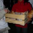 Krisna-hívő szerzetesek és az Ételt az Életért Program önkéntesei december 23-án tartottak ételosztást Marcali és Somogyvámos településeken. Marcaliban 200 főre, a helyi családsegítő szerv ellátottjai számára meleg ebéd és tartós élelmiszercsomag […]