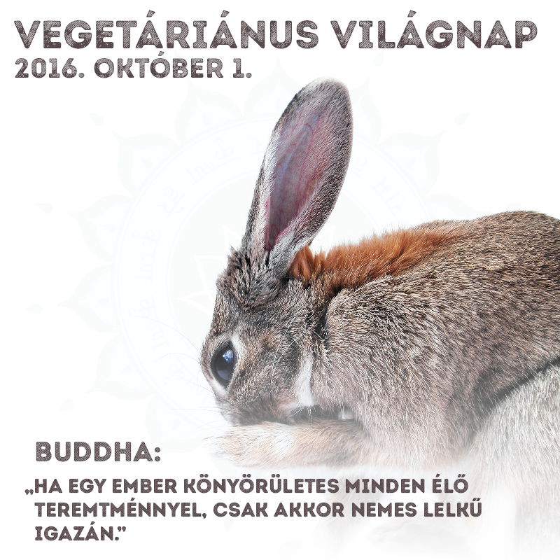 Vegetáriánus Világnap