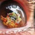 Az iskolakezdés gördülékenysége leginkább az agy és az idegrendszer teljesítményén múlik, amit a táplálással támogathatunk meg. Nyugodt figyelem, stabil idegrendszer – helyes táplálással A