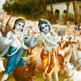 Épp ötezer éve történt, hogy az Úr eredeti, kétkarú Krisna formájában jelent meg Indiában. Bátyjával, Balarámával Vrindávan kis falujában éltek, a Jamuná folyó partján. A testvérek különösen szépek voltak. Fekete hajuk […]
