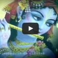 Március 16-án, vasárnap, telihold napján ünnepeljük az Úr Caitanya, Kṛṣṇa 15. századi, legutóbbi megjelenési formájának ünnepét. Amikor 1486-ban megjelent az anyagi világban Caitanya Mahāprabhu, Örök Társa, az Úr Nityānanda, és kísérői, […]
