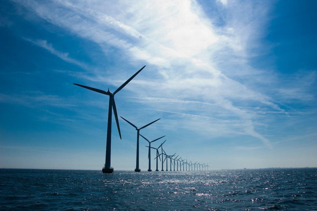 megújuló energia